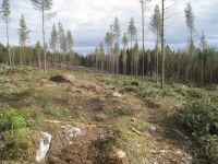 Ensimmäiset 15  uutta tonttia Dönsby West alueella. Kuvassa keskellä tuleva maasälpäkatu valmistuu loppukesästä 2014 ja sitten rakentamaan.